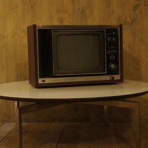 Sony trinitron First Tv Color
